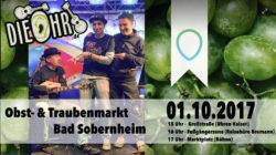 Straßenmucke 2.0 in Sobernheim